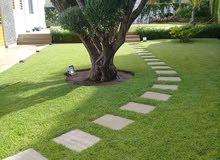 تنسيق الحدائق الداخلية والخارجية وزرع الݣزون