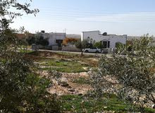قطعة أرض مساحة 27 دونم محافظة مادبا