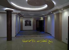 Fayed apartment is up for rent - Ismailia