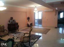شقة 210م - بيتشو امريكان سيتي - زهراء المعادي