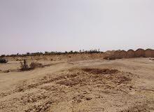 ارض وراعيه للبيع بطريق الواحات المنيا 100 قابله للتجزئه او للبدل باي ممتلكات