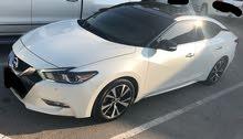 Nissan Maxima 2016 - Used