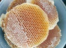 عسل طبيعي على المختبر