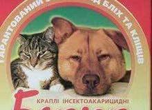 أدوية كلاب مستوردة