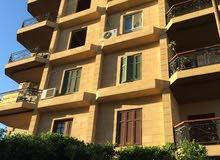 شقة بمساحة 180م بالمنطقة التاسعة علي الطوب