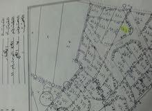 ارض للبيع في الكرك مساحة 1342 م