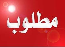 مطلوب حملة سودانية بيور