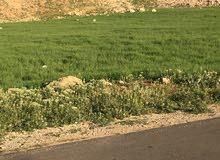 قطعة ارض للبيع في الحويطي طريق المطار