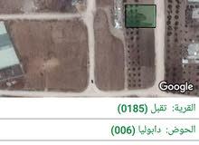 ارض للبيع حوض دابوليا قريبه جدا من شارع اسواق الفرقان وشارع كفرجايز
