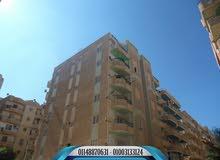 شقة ناصية شارع رئيسي مسجلة في شاطئ النخيل