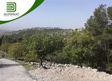ارض مميزه لليبع في المنش بمساحة 873 م خلف المواصفات والمقايس بسعر مميز جدا