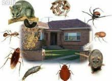 منزل بدون حشرات