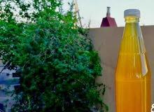 عسل زهور لايخلو من التغذية بجودة عالية ومذاق رائع