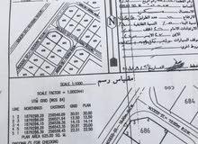 للبيع ارض مميزه بمرباط مربع ن على شارع 60 متر