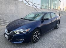 For sale 2016 Blue Maxima