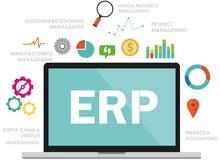 محاسب مالي + ERP