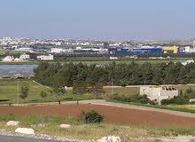 قطعة أرض مقابل خلف جامعة الزيتونة مقابل ايكيا طريق المطار