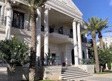 قصر للايجار في اجمل مواقع دابوق على مساحة ارض 1700 م