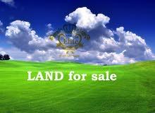 ارض للبيع في الاردن - عمان - ناعور بمساحه 990م