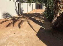 بيتي لشقق الارضية المفروشة  مصراتة خلف مستشفى السلام الدولي