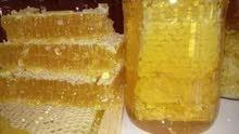عسل اصلي و طبيعي حر بأعلى جودة و بااقل سعر
