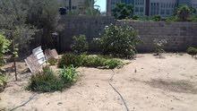 فلسطين غزة الرمال الجنوبي شارع 8 تل الهوا بجوار الكلية الجامعية للعلوم التطيقية
