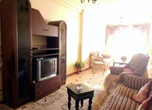 apartment for rent More than 5 in Alexandria - Sporting