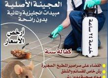 مكافحة حشرات وقوارض جميع مناطق الكويت خدمة 24ساعه