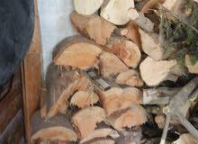 حطب قرامي سرو وكينيا جميع الاحجام أكثر من 3 طن ونص