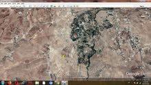 أرض للبيع في عراق الأمير في موقع مميز مع توفر الخدمات