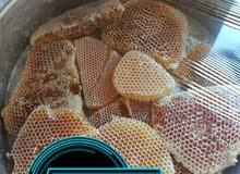 عسل سمرة وسدر مضمون