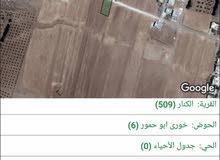 ارض للبيع في الكرك منشية ابو حمور غرب سويت لاند