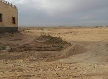 للبيع أرضي زراعية (الصور من أرض الواقع)