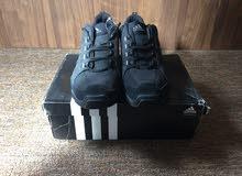 حذاء رياضي ( كويش ) أديداس adidas أصلي