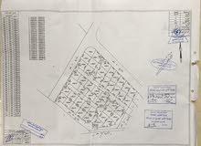 من المالك، مشروع استثماري ممتاز في المفرق الباعج حوض السكة الشرقي 9 ، 136 قطعه كل قطعه 500 م2