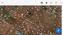 مزرعه 5 دونم للبيع في فيصلية مادبا