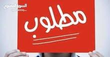 مطلوب خرفان عمرهم شهرين