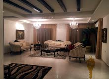 Villa age is 1 - 5 years, consists of More Rooms and More than 4 Bathrooms