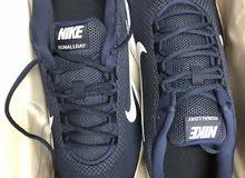 Nike Run All Day Shoes 49.5EU, 15US