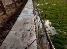 تصميم حدائق ديكورات