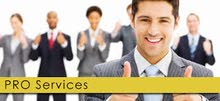Corporate PRO Services only AED 1,500 per month