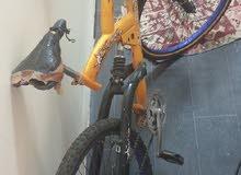 دراجة رياضية Allsafeer