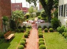 تنسيق زراعة صيانة حدائق