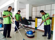 شركة دار المستقبل للنظافة الشاملة تنظيف الشقق والفلل ويوجد مكافحة  الحشرات