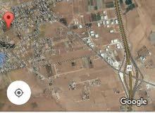 ارض سكنيه 920 م للبيع في رجم الشامي صخريه