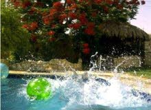 ڤيلا مع مسبح للايجار