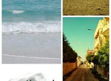 تعالي و امتلك شقة بتشوف بحر بانوراما