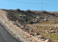 قطعة ارض ذات اطلالة مرتفعه ومميزه على حدود شفا بدران للبيع