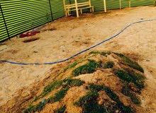 270 متر في بحر در البلح للبيع سعر 65 دينار للمتر