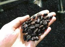 قهوه تايلنديه اربيكا درجه اولي ممتازه جدا منافسه